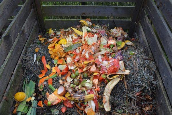 green-waste-513609_640